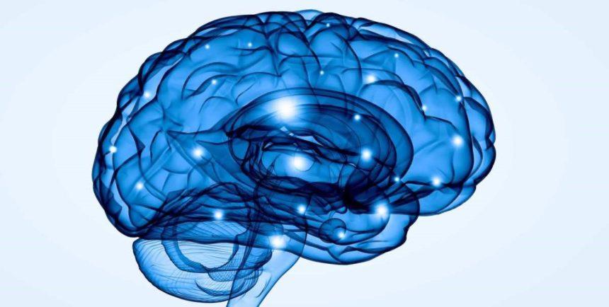 Estimulación cognitiva a través de la telemedicina